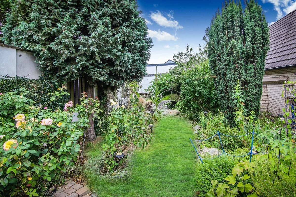 Garten im hintern Bereich