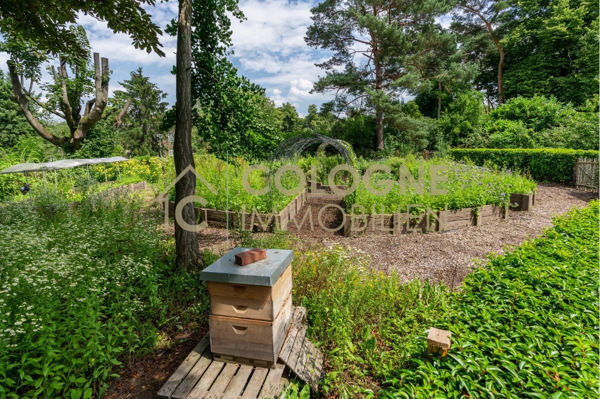 Eigener Gemüse und Kräutergarten